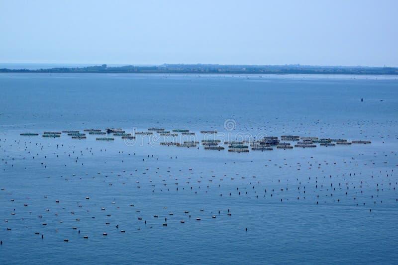 Impresa di piscicoltura in mare fotografie stock