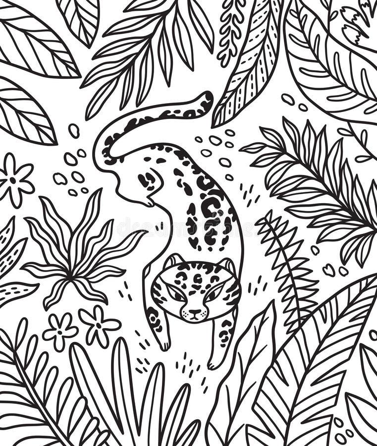 Impresión blanco y negro con el puma de la historieta y las hojas tropicales en esquema Ilustraci?n del vector stock de ilustración
