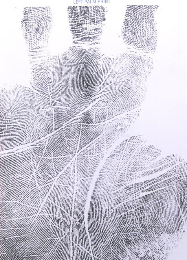 Impresión de la palma. imágenes de archivo libres de regalías