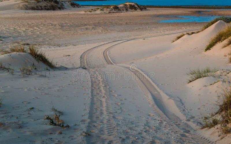 Impresión del neumático de coche del tracción cuatro ruedas en la duna de arena en la playa de Trafalgar, Cádiz, España imágenes de archivo libres de regalías