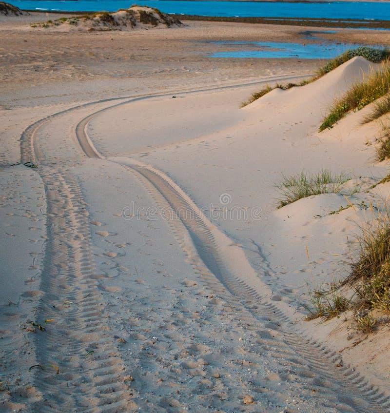Impresión del neumático de coche del tracción cuatro ruedas en la duna de arena en la playa de Trafalgar, Cádiz, España fotos de archivo