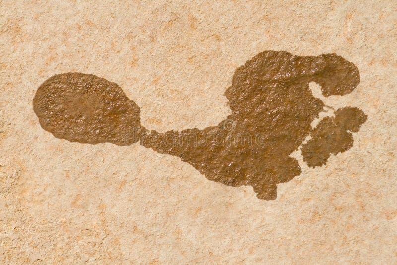 Impresión del pie imagen de archivo libre de regalías