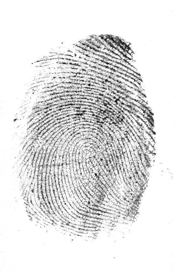 Impresión del pulgar fotografía de archivo libre de regalías