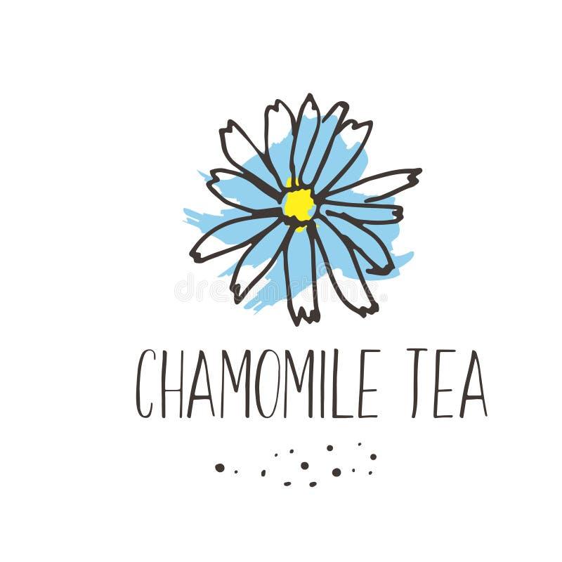 Impresión del té de manzanilla Diseño caliente herbario orgánico del pakage de las bebidas La mano bosquejó las hierbas y florece stock de ilustración