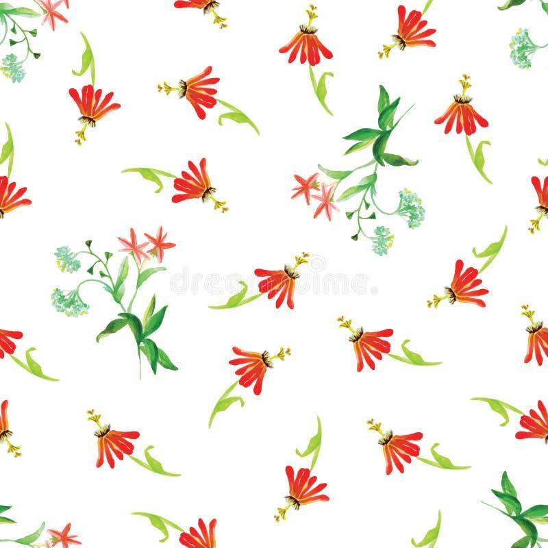 Impresión inconsútil del vector del rojo de la acuarela tropical de las flores stock de ilustración