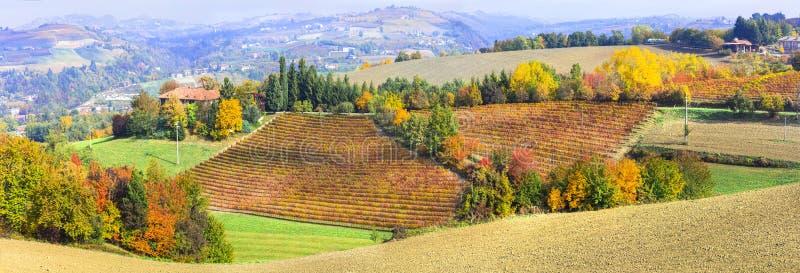 Impresionantes viñedos multicolores en la región del Piamonte, Italia foto de archivo