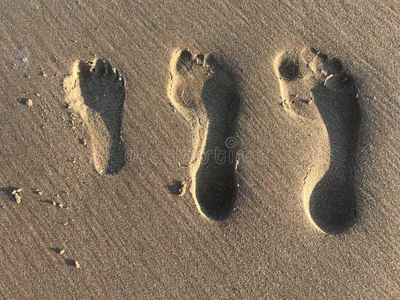 Impresiones del pie de la familia en la arena imagen de archivo