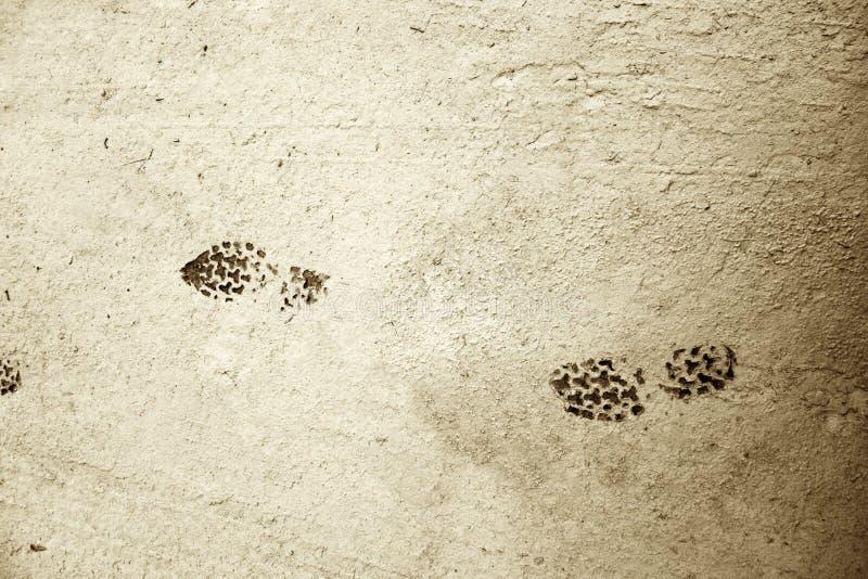 Impresiones del zapato en fango seco imagenes de archivo