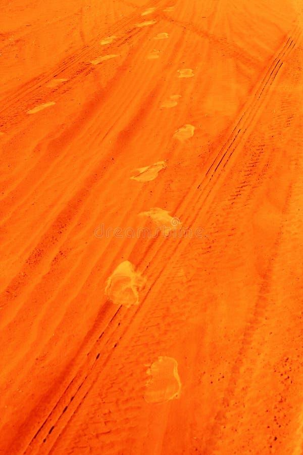 Impresiones del zapato y marcas de resbalón en desierto australiano rojo fotos de archivo