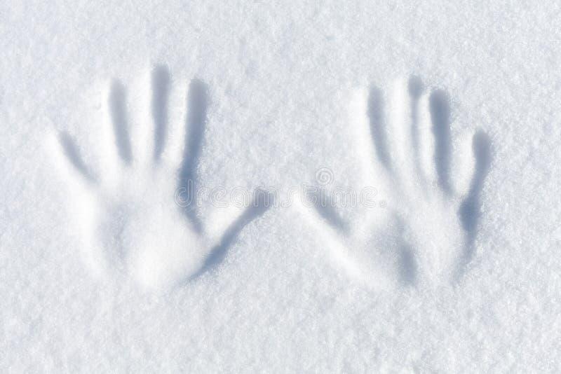 Impressão da palma na neve branca fresca fotos de stock