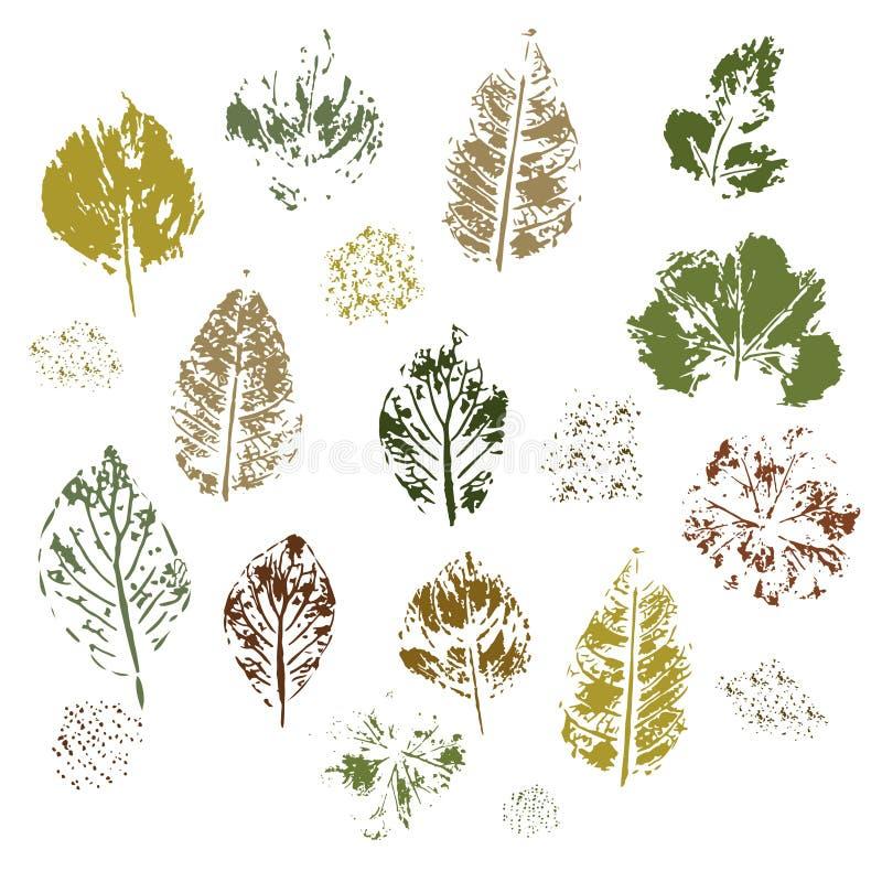 Impressão das folhas diferentes em um fundo branco Vetor ilustração do vetor