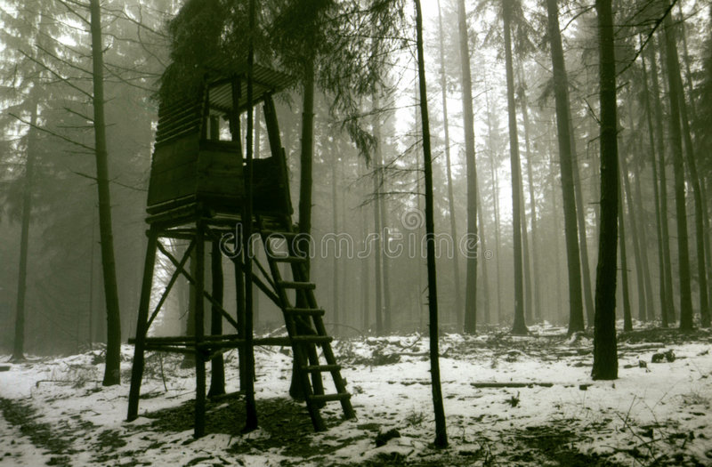 Impression de l'hiver photo libre de droits