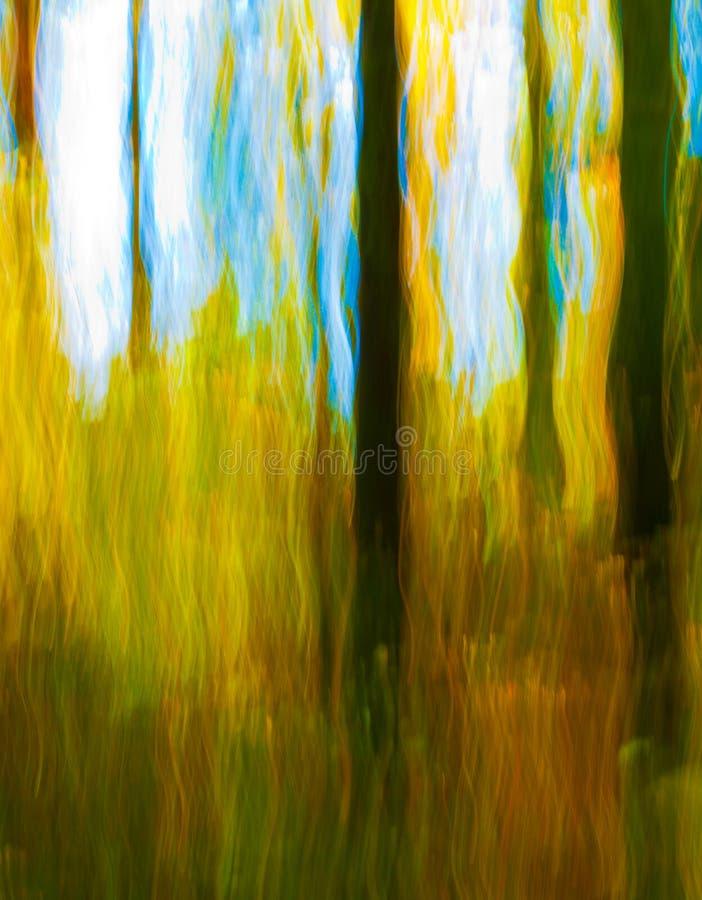 Impressioni di autunno immagini stock