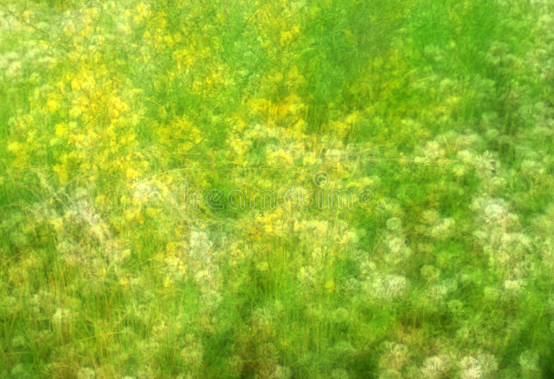 Impressionist Field with Wildflowers. Photo of an impressionist field with wildflowers. This is not blurred, but rather a sandwich of eight exposures combined stock images
