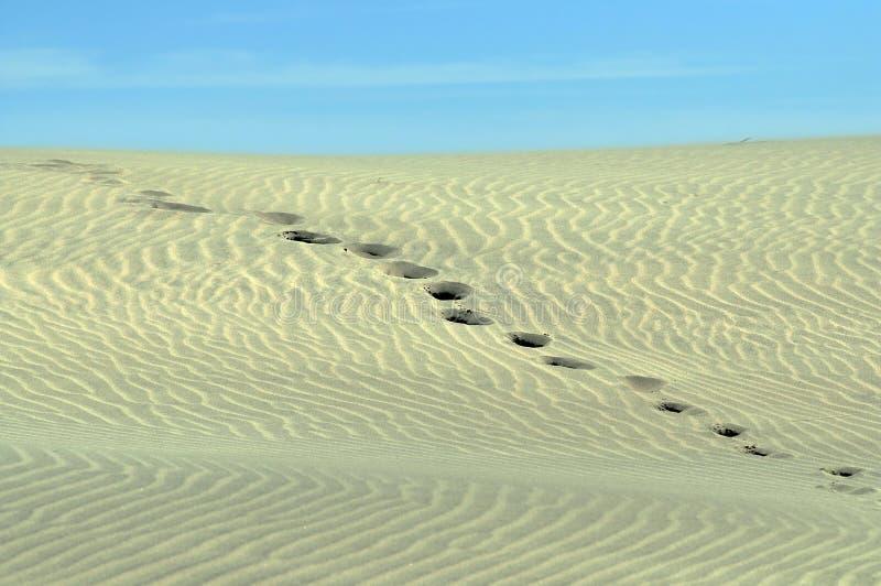 Impressions de pied allant au-dessus d'une dune de sable. photo stock