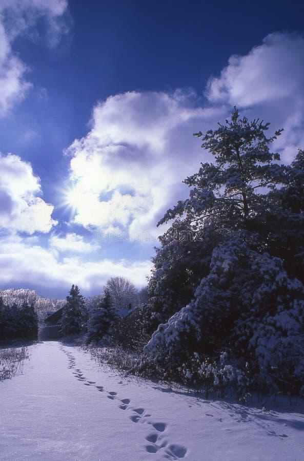 Impressions de pied dans la neige photos libres de droits