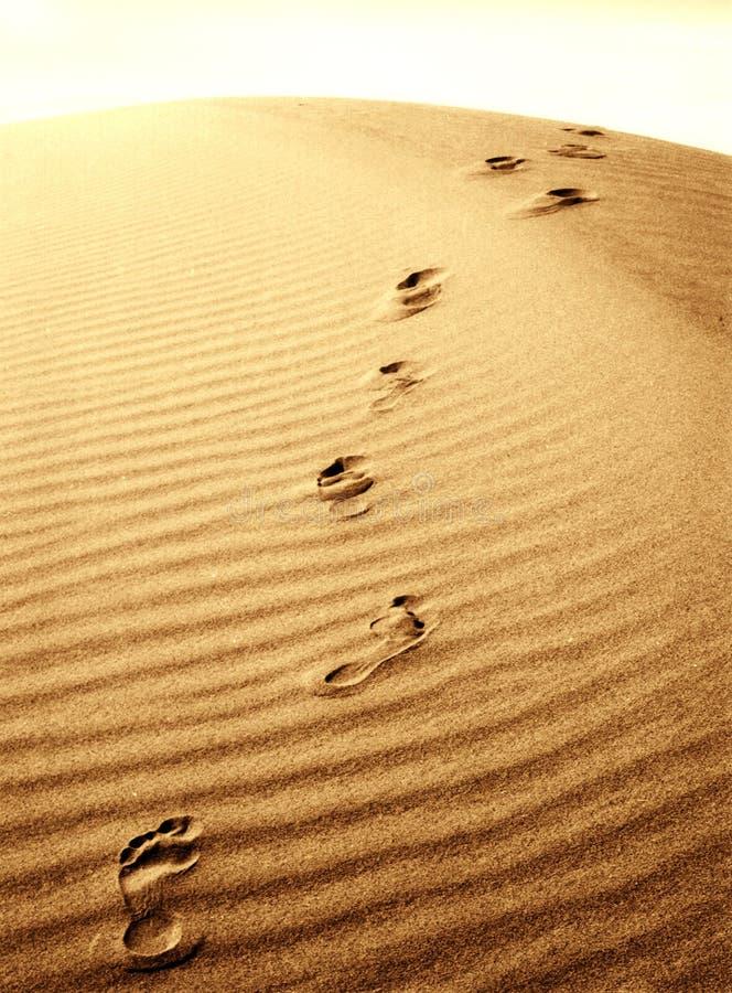 Impressions de pied dans le sable image libre de droits