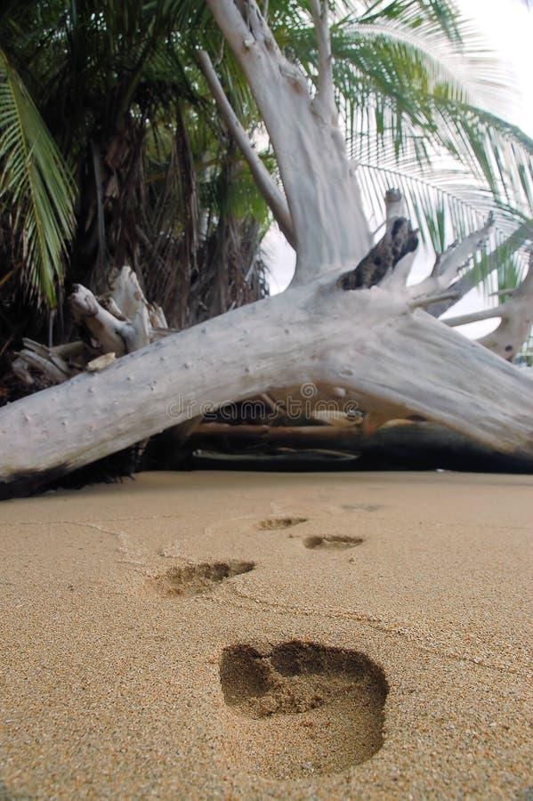Impressions de sable photo libre de droits