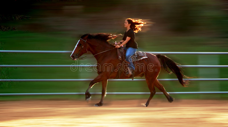 Impressions of a galop. Horseback riding girl with backlight