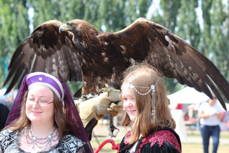 Impressive display of Bird of Prey royalty free stock image
