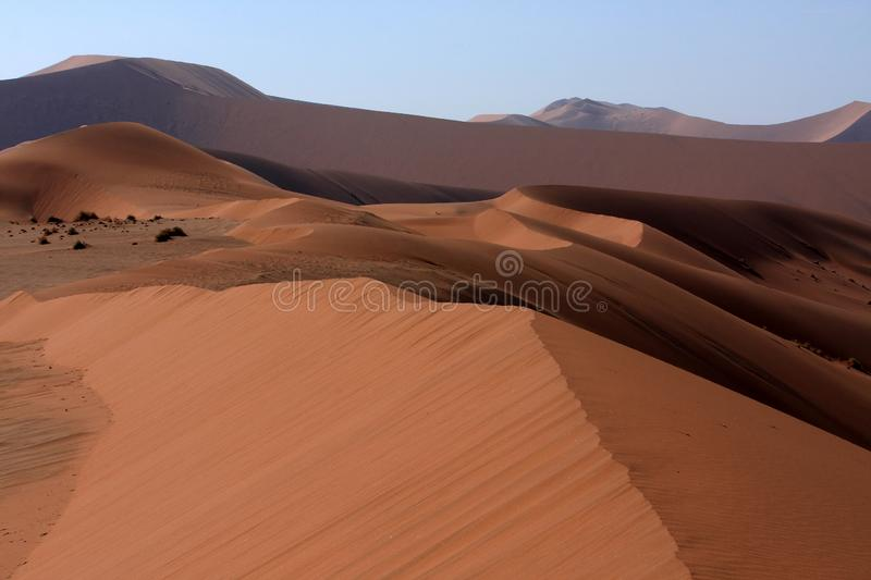 Desert Sands, Sossusvlei, Namibia, Southern Africa. The impressive sand dunes of Namibia are shaped by the wind creating sand dune sculptures in the desert royalty free stock photo