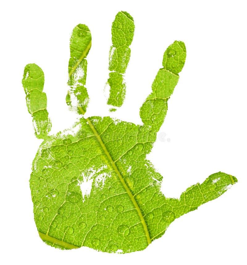 Imprint da mão no fundo verde da folha fotografia de stock royalty free