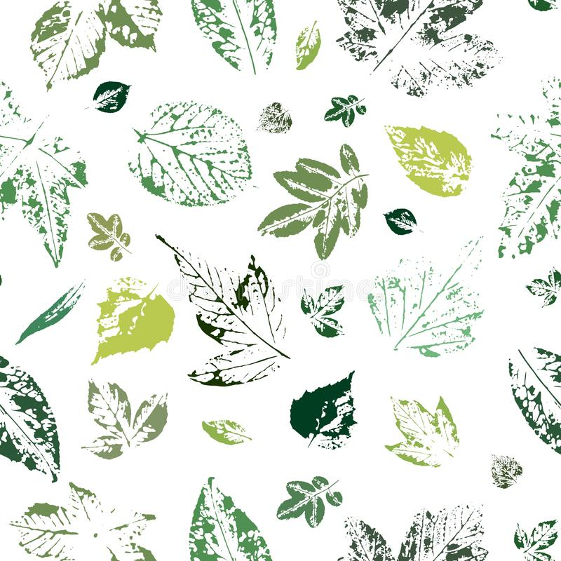 Seamless pattern with imprints of green leaves on a white background. Imprints of different leaves of green color on a white background. The leaves are vector illustration