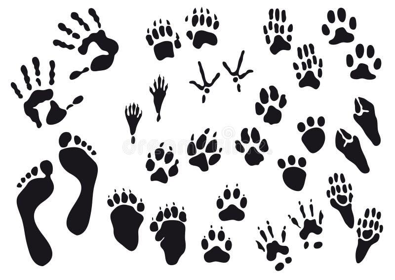 Imprints do ser humano e do animal foto de stock royalty free