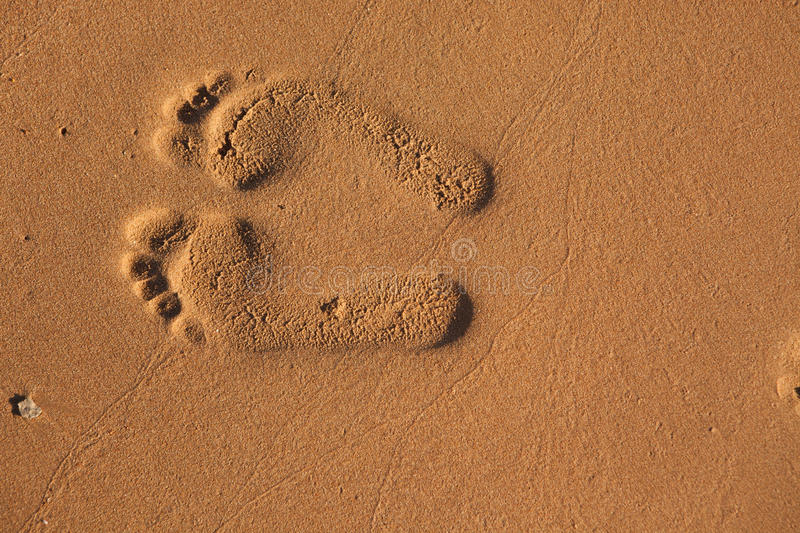 Download Imprints of footsteps stock image. Image of graphic, damp - 28730603