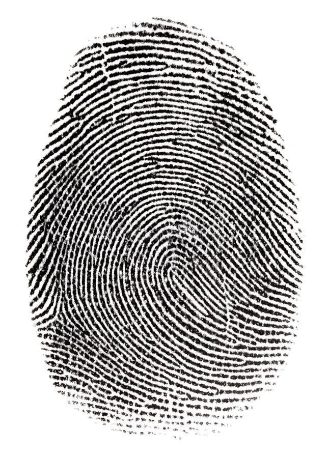 Impronta digitale reale fotografia stock
