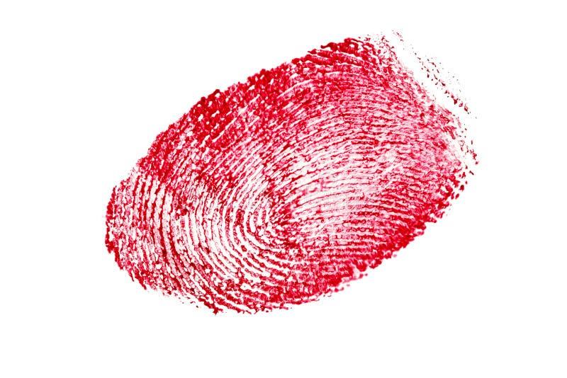 Impronta digitale rossa isolata su un fondo bianco immagine stock