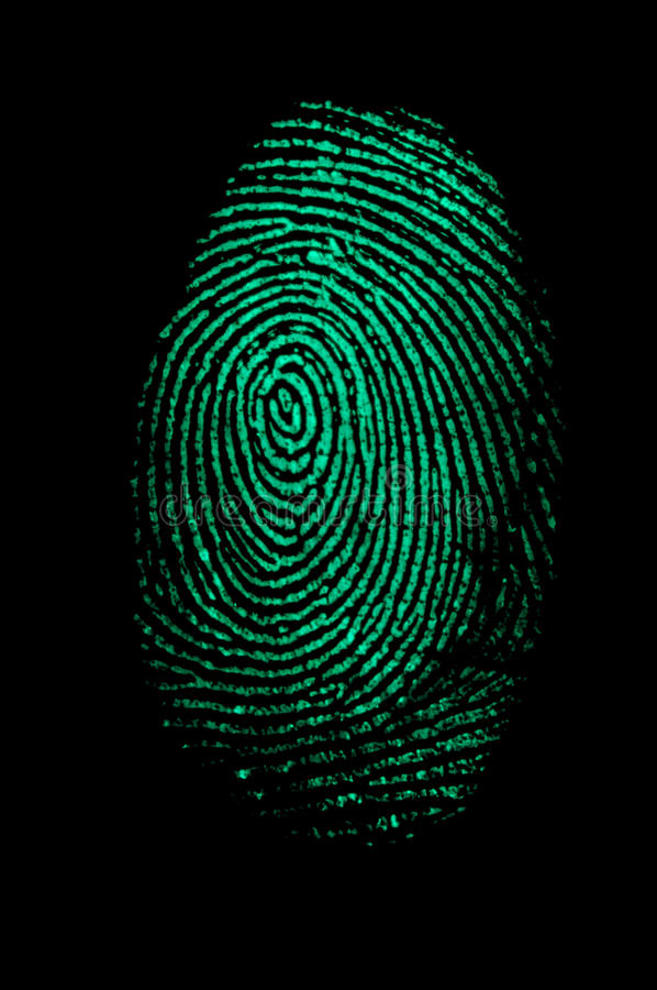 Impronta digitale verde immagine stock libera da diritti