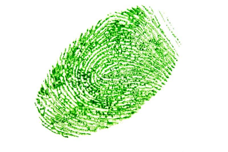 Impronta digitale verde isolata su un fondo bianco fotografia stock