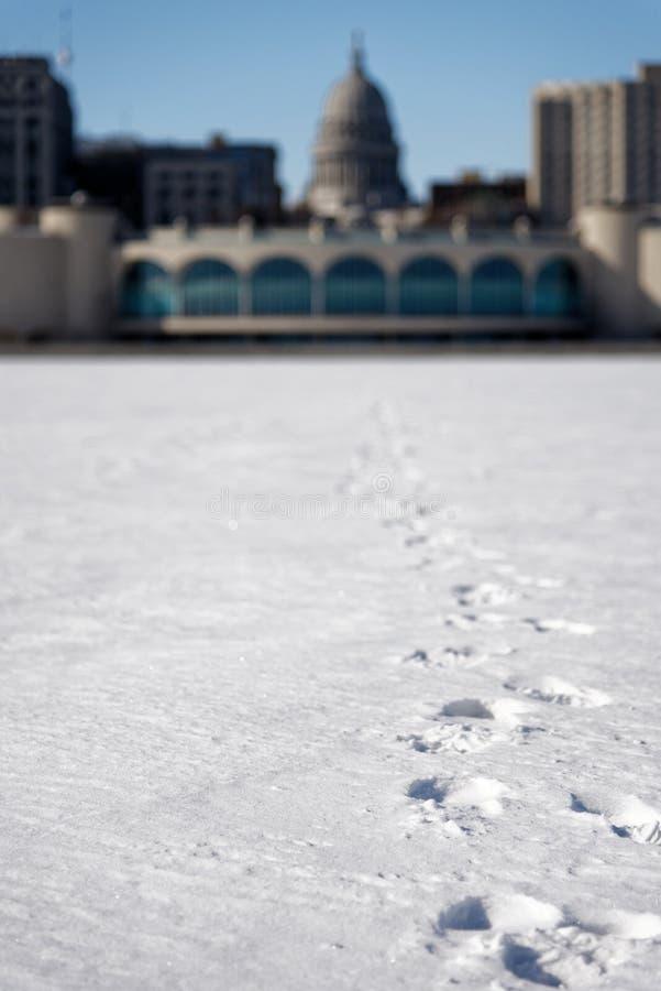 Impronta sulla neve sul lago fotografia stock libera da diritti