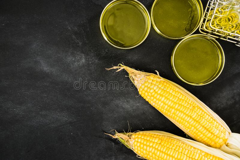 Improved gold corn research and production foods. Improved gold corn research and production of organic foods through experimental testing on the blackboard by stock photography