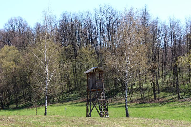 Improvised old hunting lookout tower made of wood surrounded with grass and tall trees with clear blue sky in background stock image