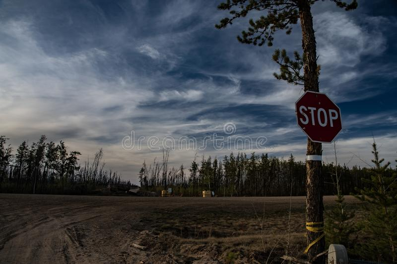 Improvised post for stop sign. Junction on forestry road in northern Alberta . Use available materials royalty free stock photography