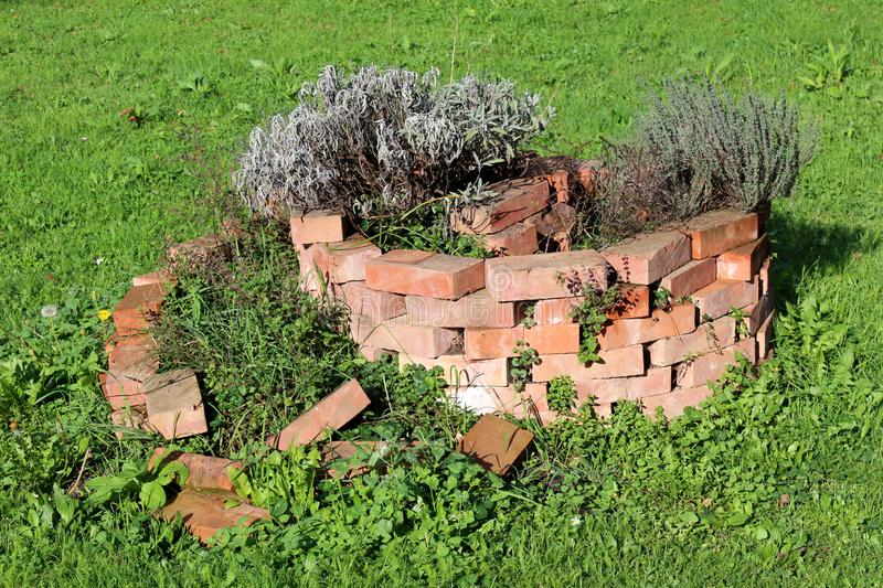 Improwizująca ślimakowata czerwonej cegły ogródu kwiatu wyspa z łamanymi cegłami i stronniczo suszyć roślinami czeka być naprawia obrazy stock