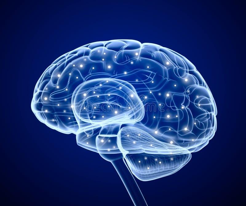 Impulsos do cérebro. Prosess de pensamento. ilustração stock