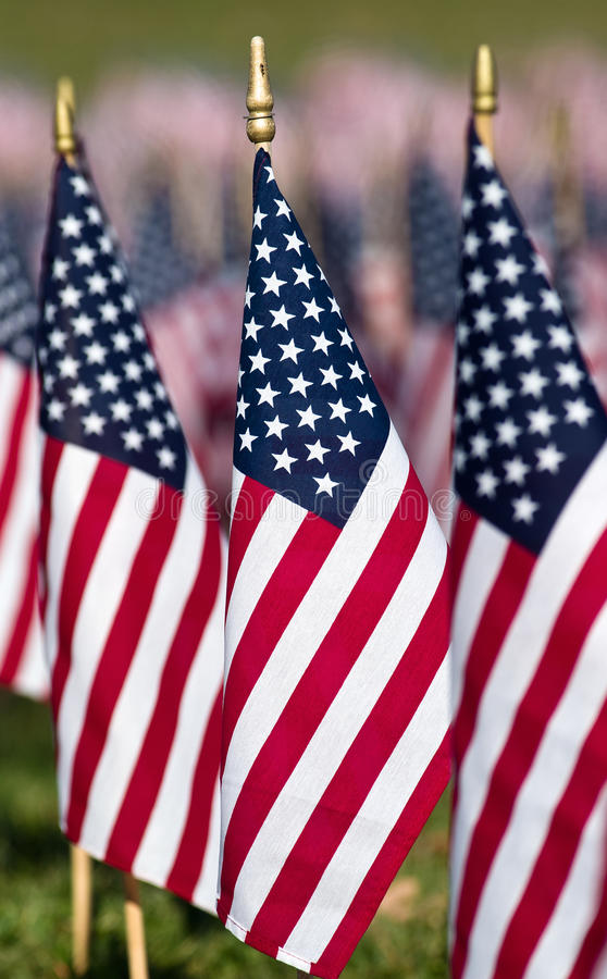 Free In Honor Of Our Veterans Royalty Free Stock Images - 27659259