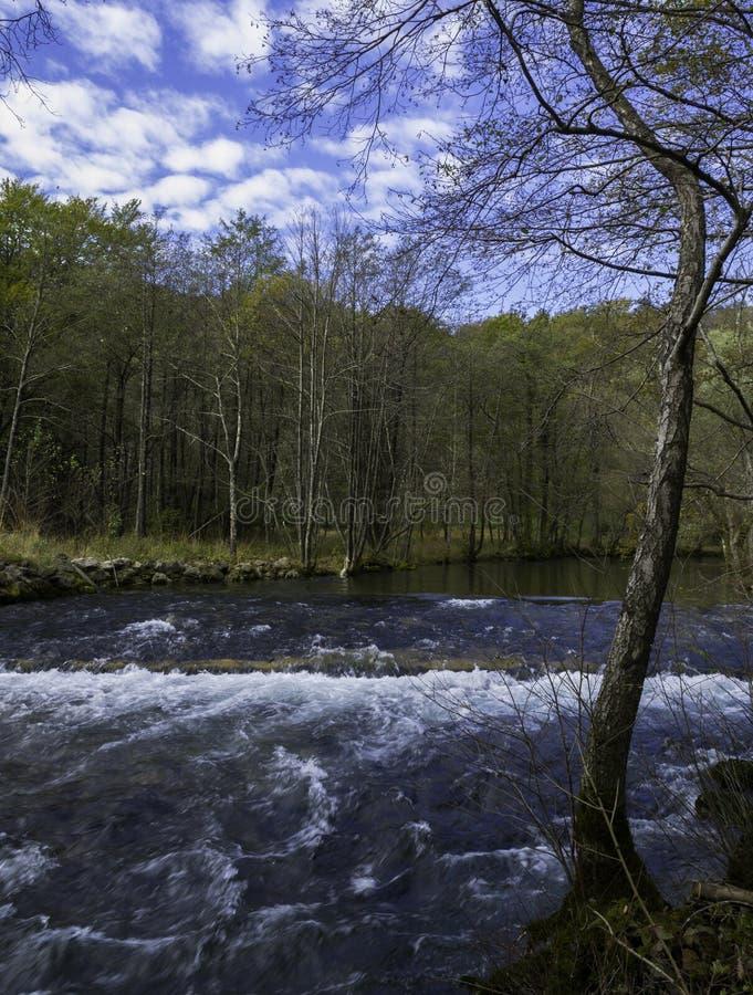Ina del  de RijeÄ del río, Croacia imagen de archivo libre de regalías