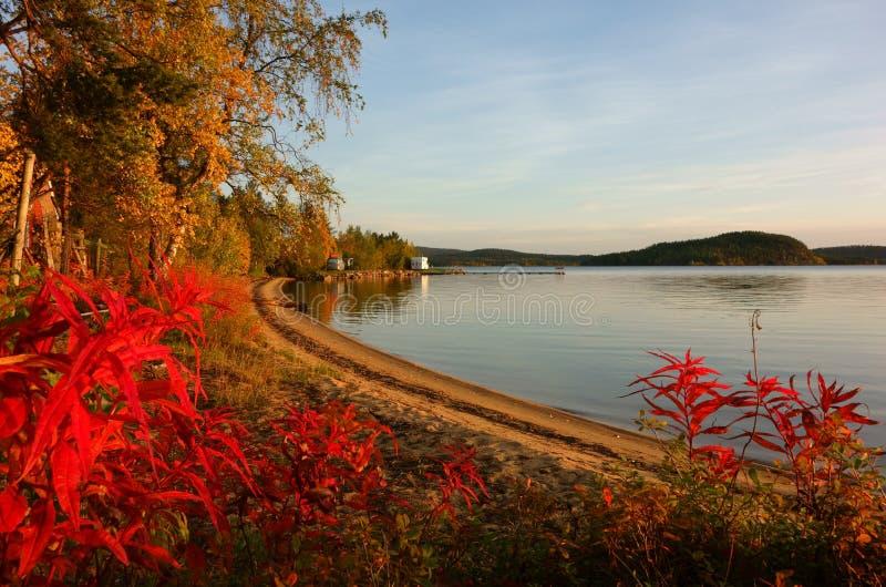 Inari sjö, Lapland royaltyfria bilder