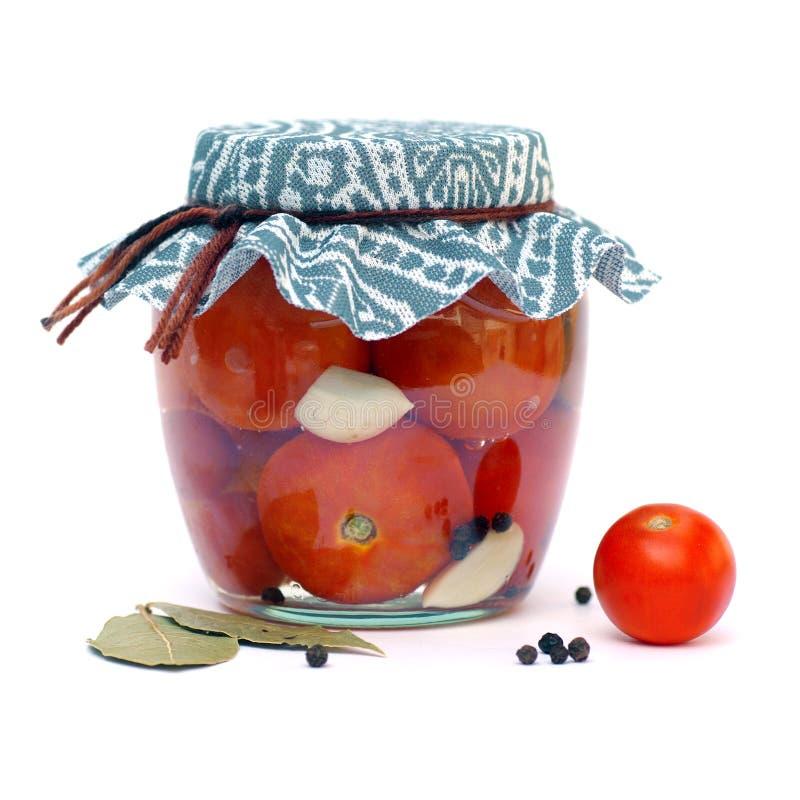 Inblikkende tomaten stock fotografie