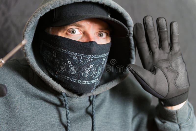 Inbrottstjuv Busted arkivfoto