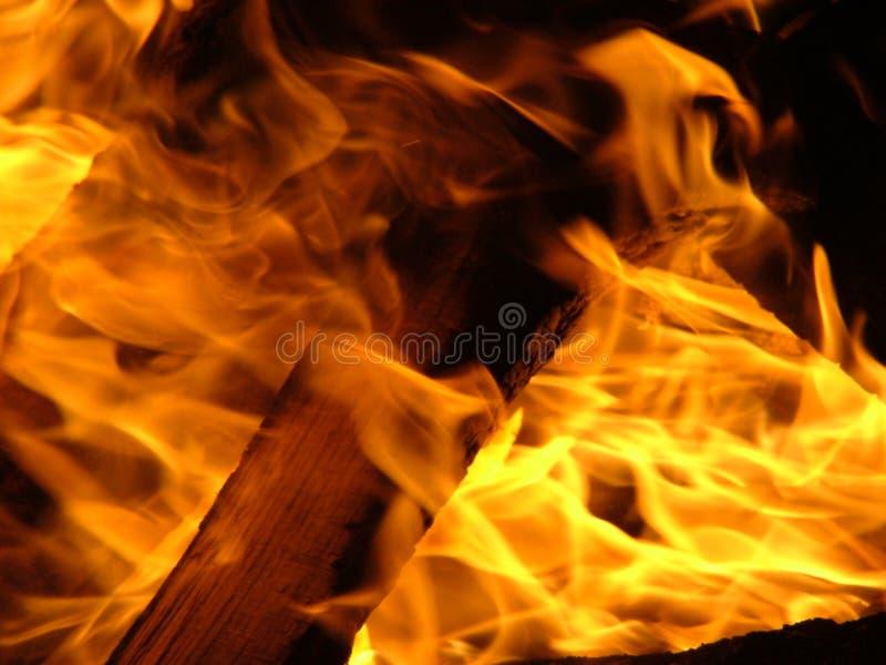 Download Incêndio foto de stock. Imagem de campfire, queimado, chama - 61302