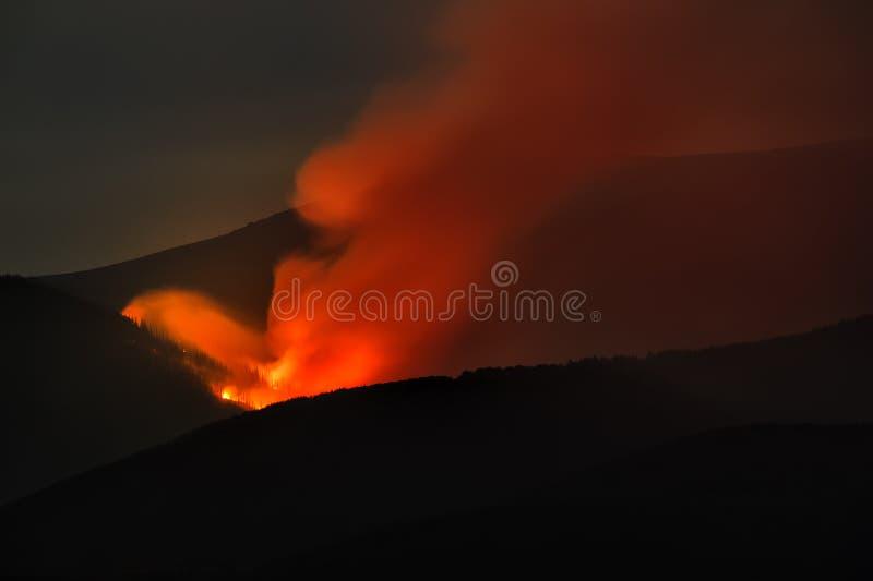 Incêndio florestal imagem de stock royalty free