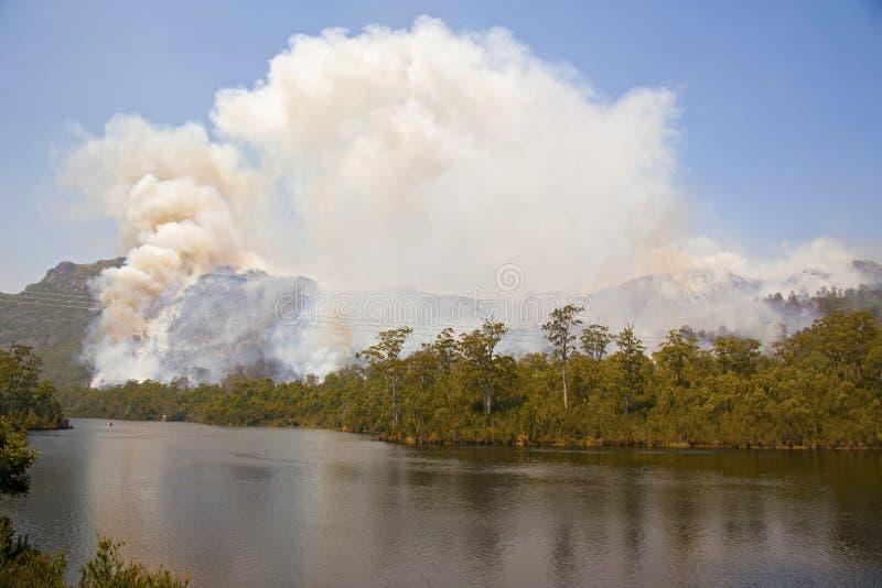 Incêndio florestal maciço imagens de stock royalty free