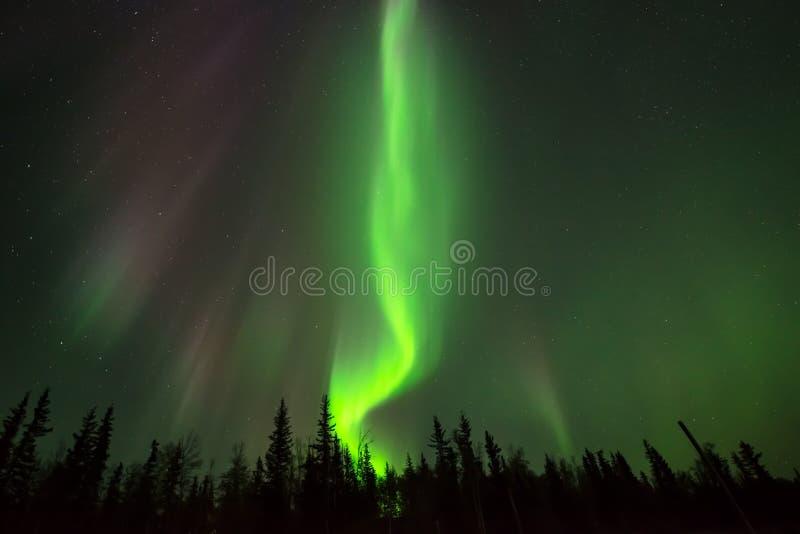 Incêndio verde fotografia de stock royalty free
