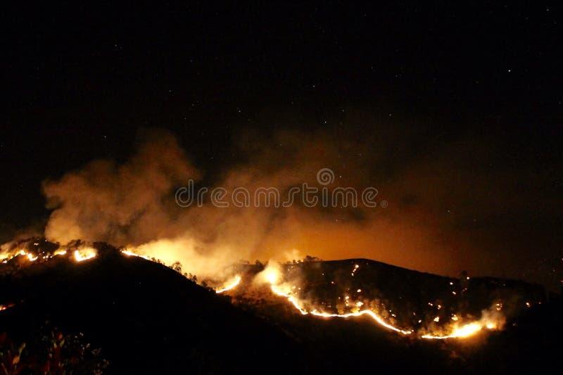 Incêndio violento na noite fotos de stock royalty free