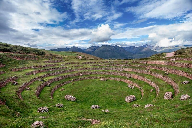 Inca Agricultural forskningstation, Moray, Peru arkivbild